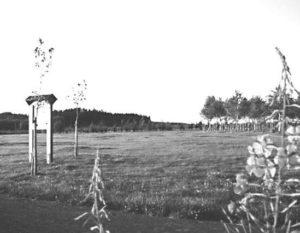 Bosco della Pace di Bastogne: la «sentinella Cassino».