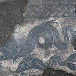 Fig. 6: Particolare del mosaico in corrispondenza del passaggio tra i vani A 27 e A 28 (foto: Giovanni Murro).