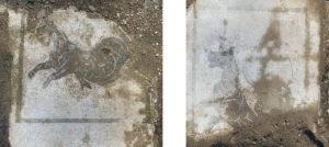 Fig. 7: Alcuni mosaici dall'ambiente A 46 (foto: Giovanni Murro).