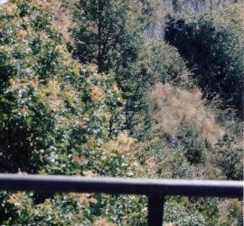 Foto 1: La carreggiata della strada S. Elia-Vallerotonda.