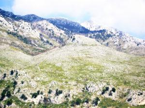 Fig. 2. Sperone roccioso di Sant'Eustachio, appendice di Monte Sambùcaro (sopra).